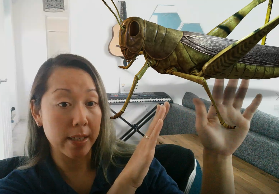 Julie on a Microsoft Teams video call. Julie is wearing a black top and is sat gesturing at the image of a grasshopper which has been superimposed into her image on the call.