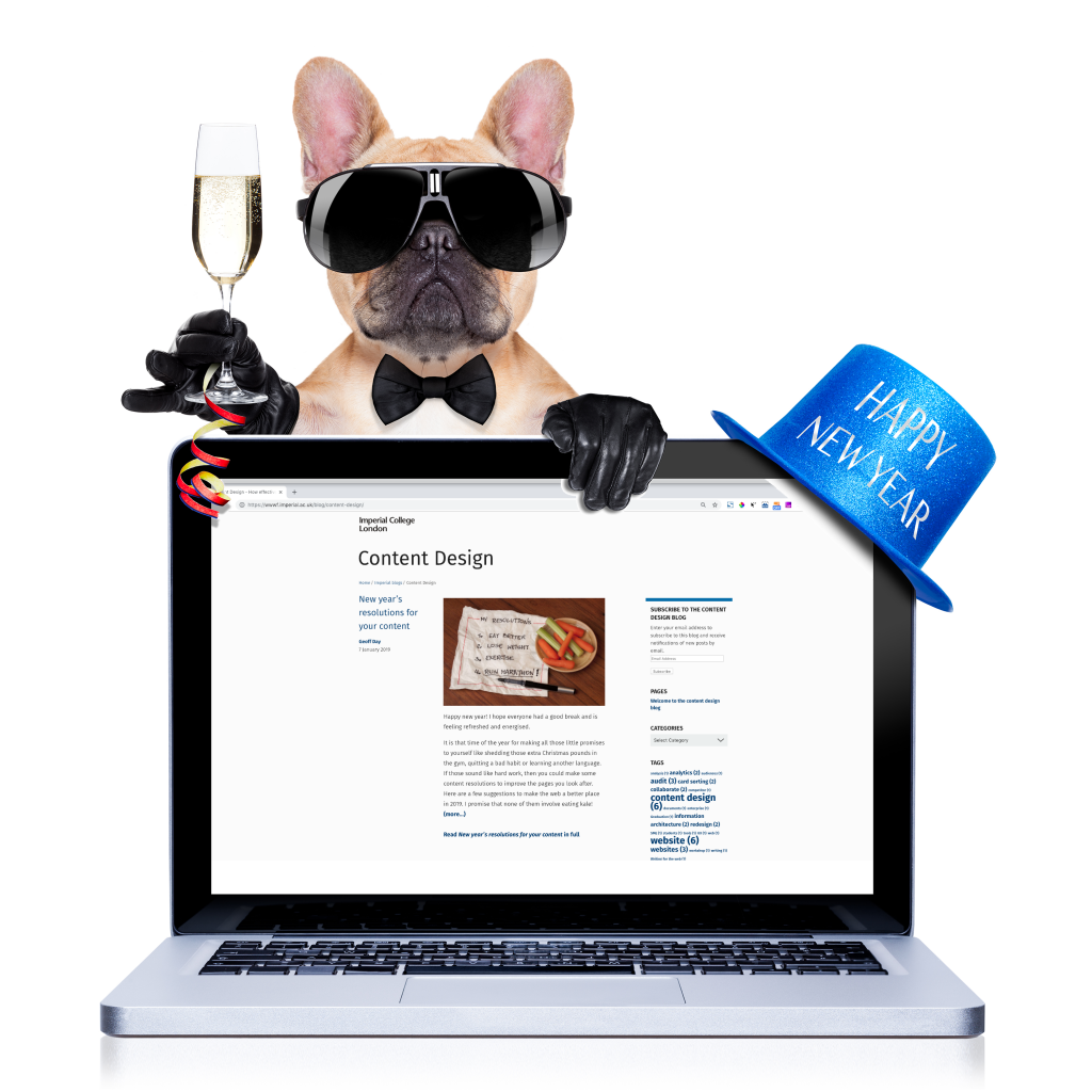 Small dog wearing sunglasses with a glass of champagne holding a laptop displaying the Content Design blog.