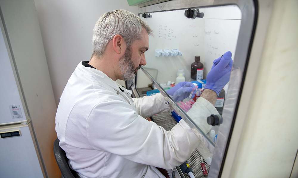 Researcher in lab at St Mary's