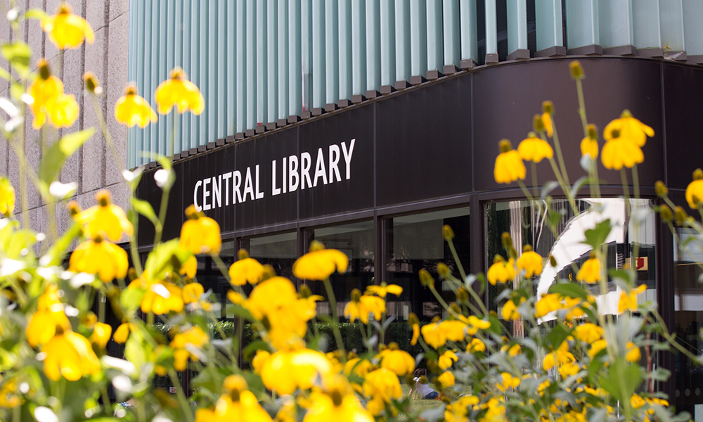 A photo of the Central Library at Imperial's South Kensington Campus with yellow flowers in the foreground
