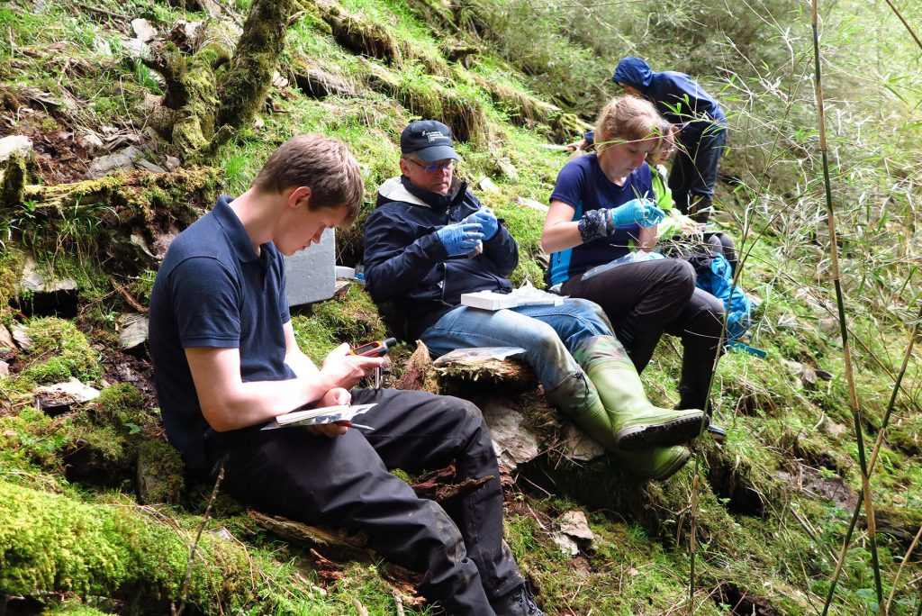 finding and swabbing the elusive Hynobious salamanders at 4000m in the Hehuan mountains. Courtesy of Yeh Ta-Chuan.