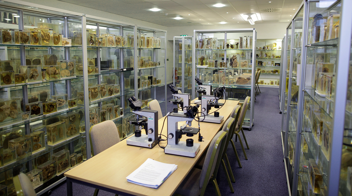 Pathology museum
