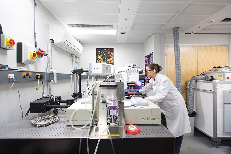 Dr Cristina Lo Celso looking in a microscpoe in her lab