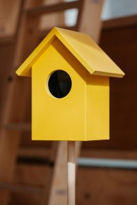 A bright yellow bird box