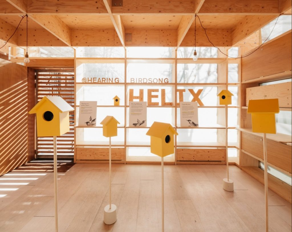 A picture of yelllow bird boxes at a pop-up event.