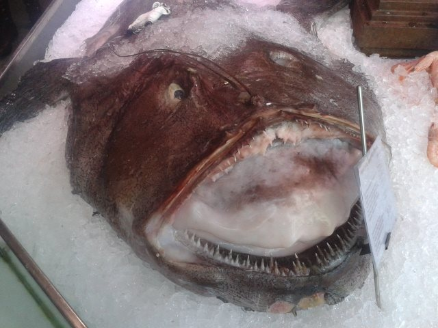 We met this guy at the Mercado de San Miguel