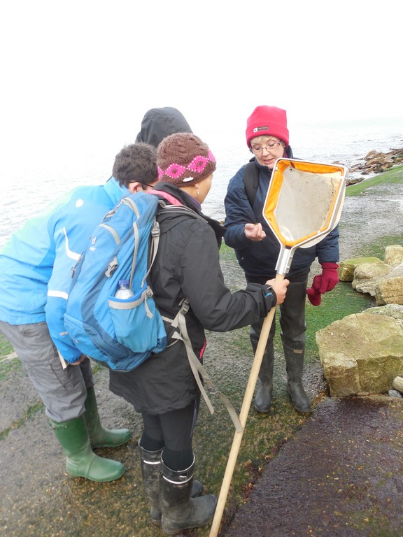 Eileen showing one of the many algae species we found at Swanage