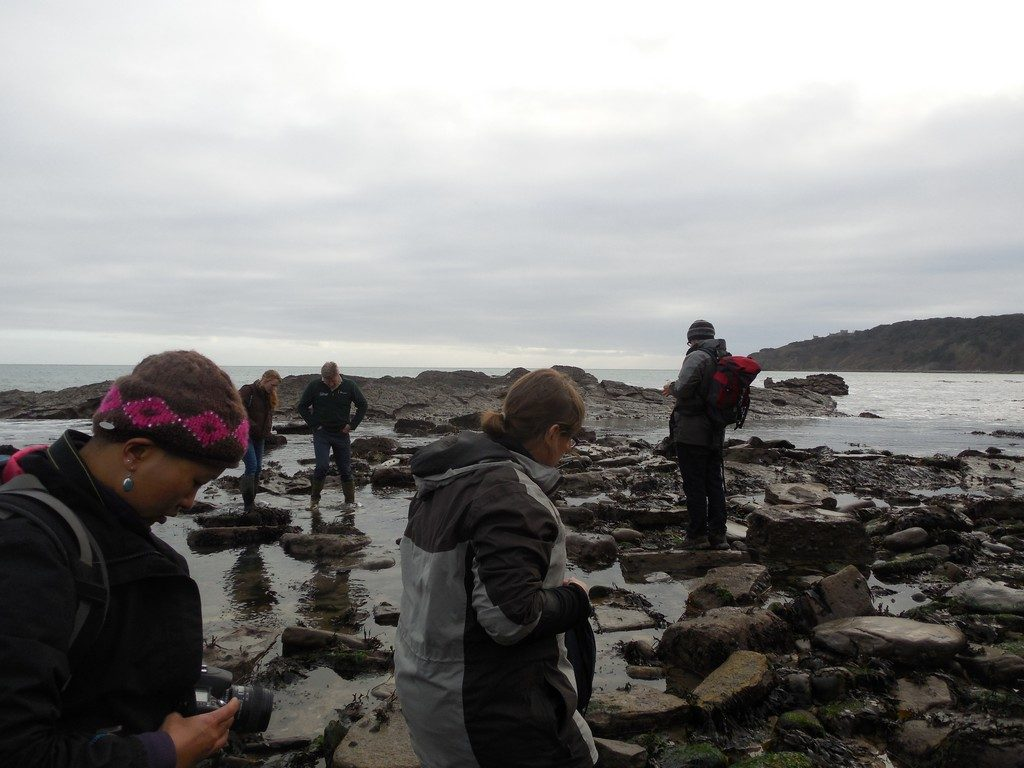 Rockpooling in Swanage