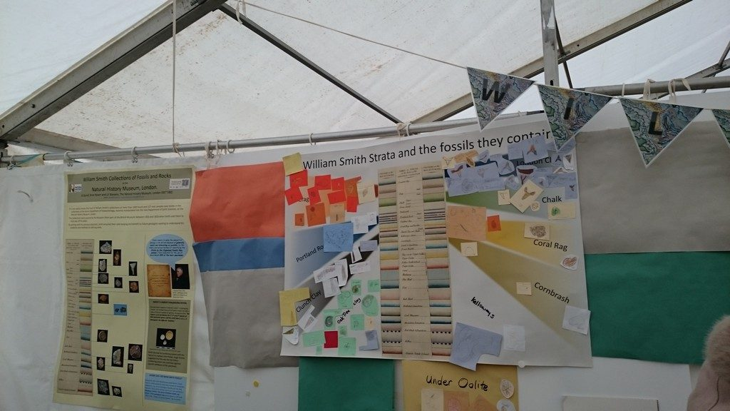 Natural History Museum's stand at Lyme Regis Fossil Festival on William Smith