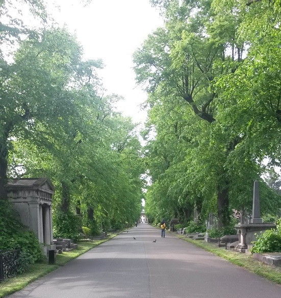 Another walk through Old Brompton Cemetry