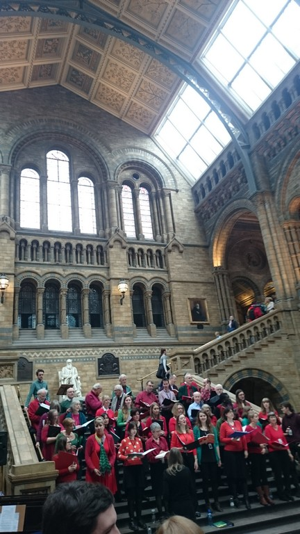 Carol singing in Natural History Museum Hintze Hall