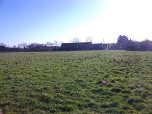 Field in the New Forest - a frosty but sunny day for earthworm sampling