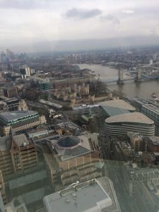 View from the Skygarden