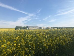 Biogas plant and field