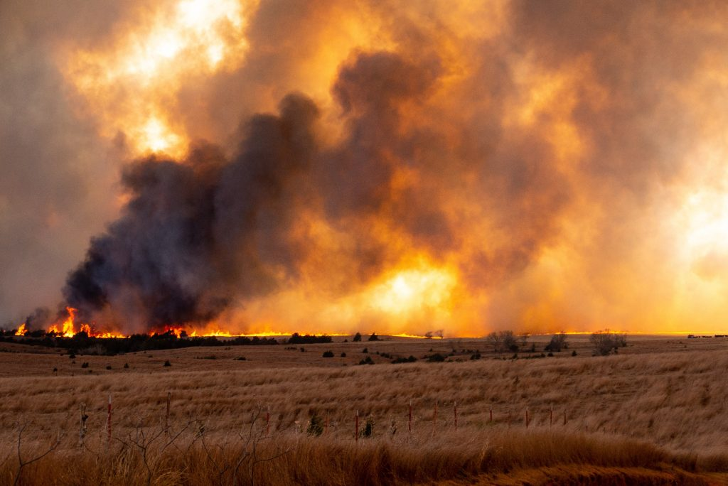 A wildfire on the horizon of grassland
